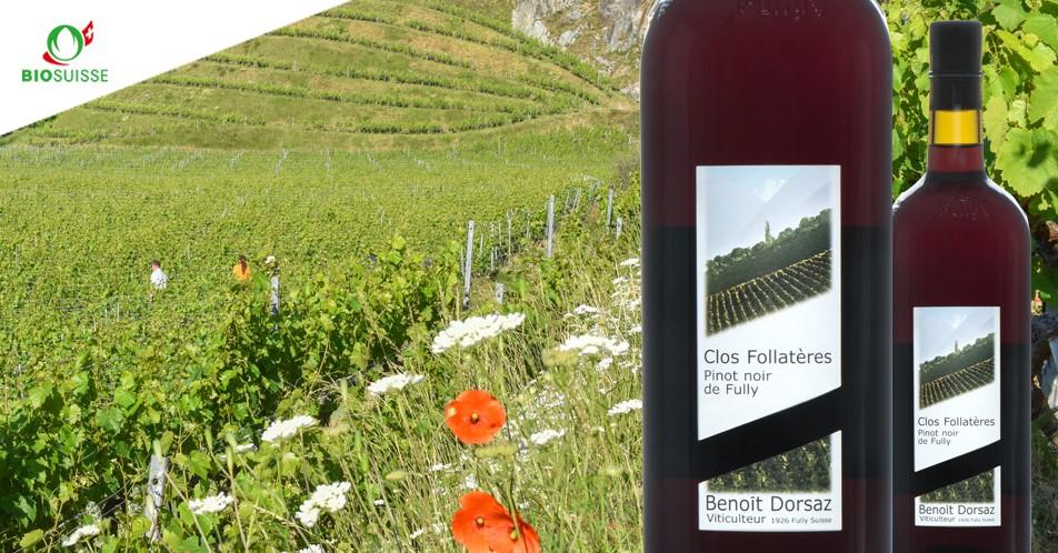 Les Follatères Benoit Dorsaz vigneron bio biodynamie à Fully, Valais